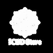CBD Store logo.png