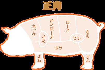 生肉 部位