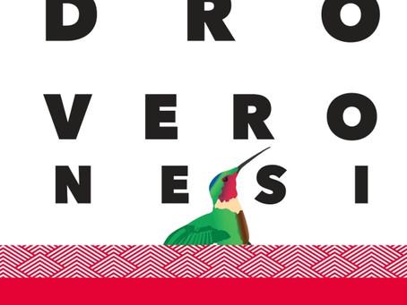 Le Colibri de Sandro Veronisi