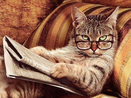 Mes lunettes (tome 3 et fin).