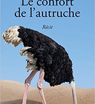 Le confort de l'autruche par Martine Magnin