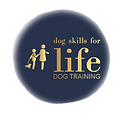 Dogs%20Skills%20Video%20Logo_edited.png
