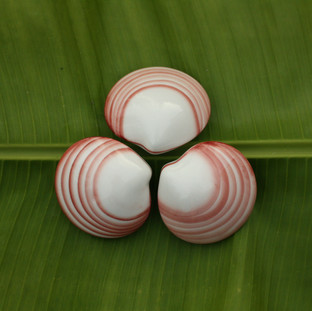 Lava Shells