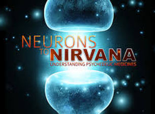 Neurons to Nirvana.jpg