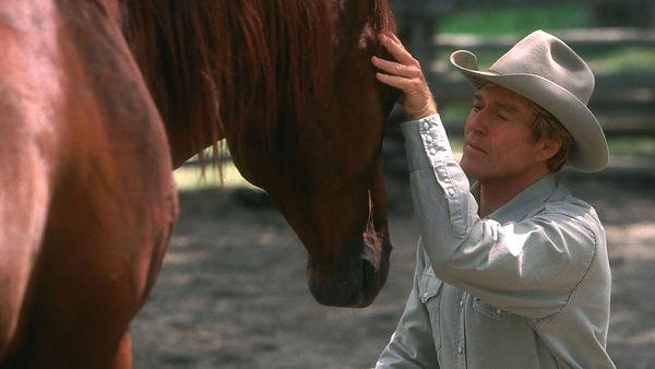 the horse whisper.jpg