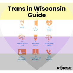 Trans In Wisconsin Guide