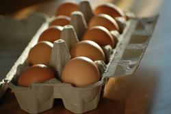 Ekološka jajca