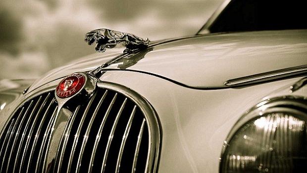 Jaguar2_edited.jpg