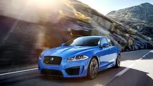 Jaguar11_edited.jpg