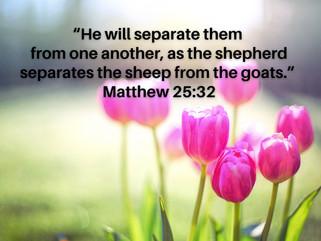 Spiritual Food in Quarantine