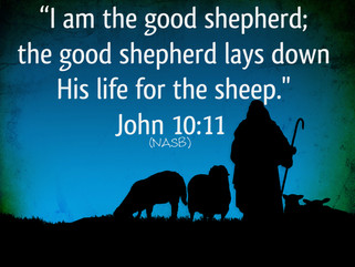 """What Makes a Shepherd?"""