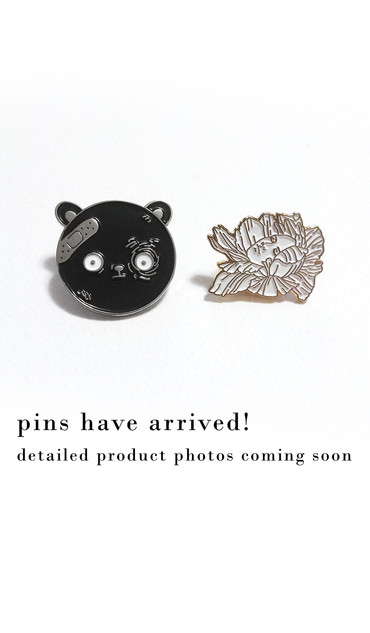 pin update.jpg