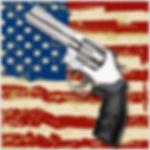 home_guns.jpg