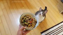 Foodandmypet