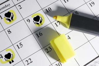 Creating a Cause Marketing Program with A Calendar