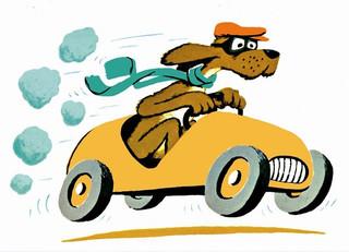 Go Dogs Go!!