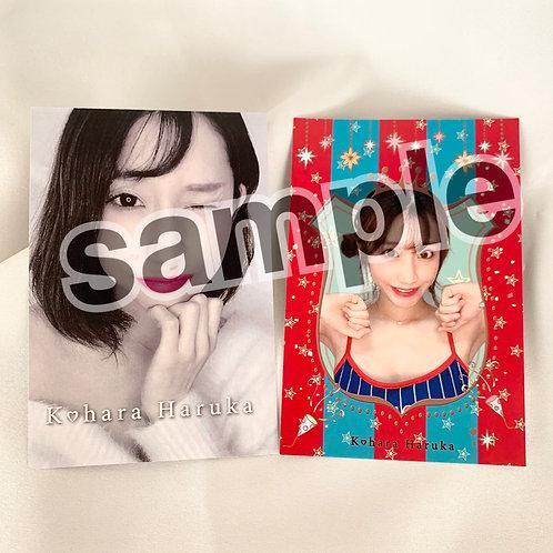 小原春香 ポストカード 2枚組