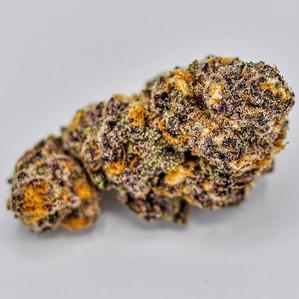 Purple Gelato - Michigan