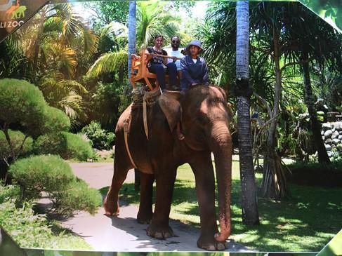 Elephant Riding Bali