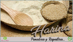 Harina Quinoa Real.png