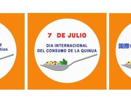 VALOR ÚNICO Y SIN COSTO DE ENVÍO POR EL DIA INTERNACIONAL DEL CONSUMO DE QUINUA EN CHILE, BOLIVIA Y