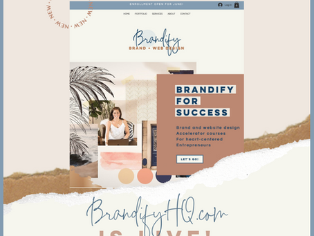 Introducing my dream business, Brandify!