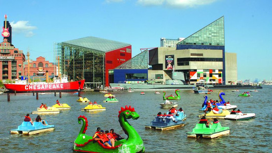 Baltimore Paddle Boats