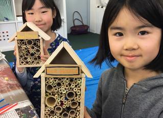 蜂について学ぼう Help the Bees of Yamagata!