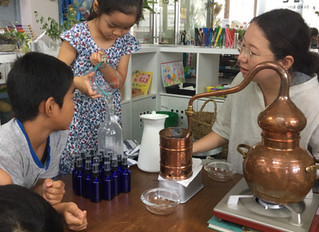 植物で蒸留水を作ろう An Introduction to Plant Extracting Techniques