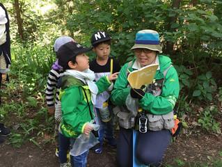野生動物観察スキルアップツアー ~身近な野生動物たちを探しながらオリジナル標本箱を作ろう~A Walk in the Woods