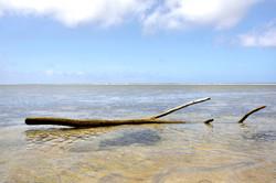 Île de Belep
