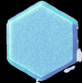 Hexagon Femmina-FEMtrepreneurs02.png