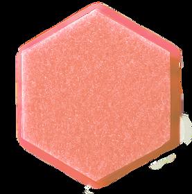 Hexagon Femmina-FEMtrepreneurs.png