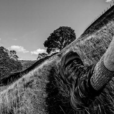 Leg Walking (c) Steve Harper