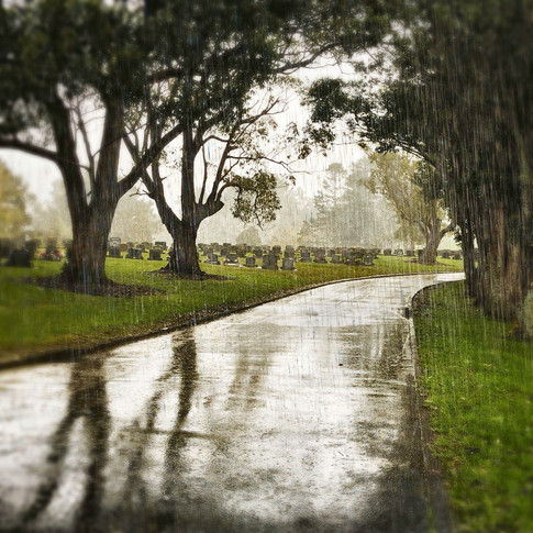 Wet Cemetery (c) Linda Friend