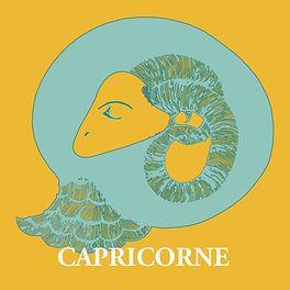 capricorne3.jpg