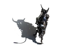 bull5.jpg