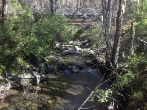 Trinity County 5 Bridges Project wins APWA Award