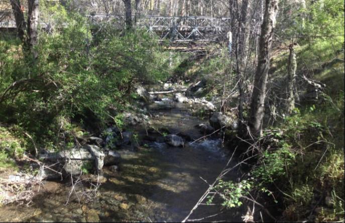 Hayfork Creek Bridge Replacement