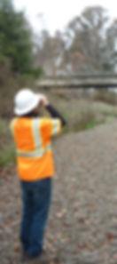 Bird Surveying