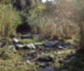 Sabercat Creek Wetland Mitigation