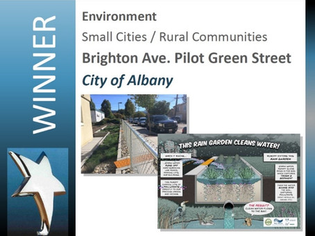 Benefits of Biofiltration Highlighted through Award-winning Green Street Pilot Project