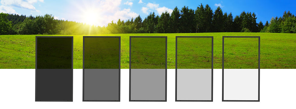 design (1) 2 2.jpg