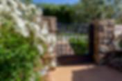 3803 White Rose_0004.jpg