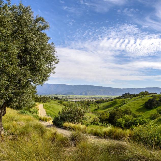 Stunning Valley Landscape