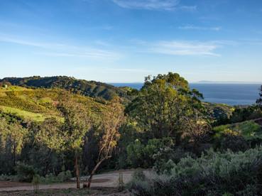 Montecito Estate Site