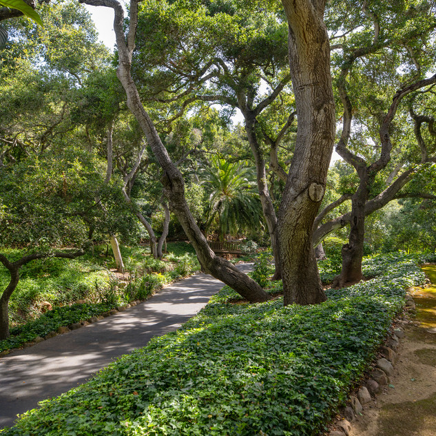 Numerous Walking Paths and Trails