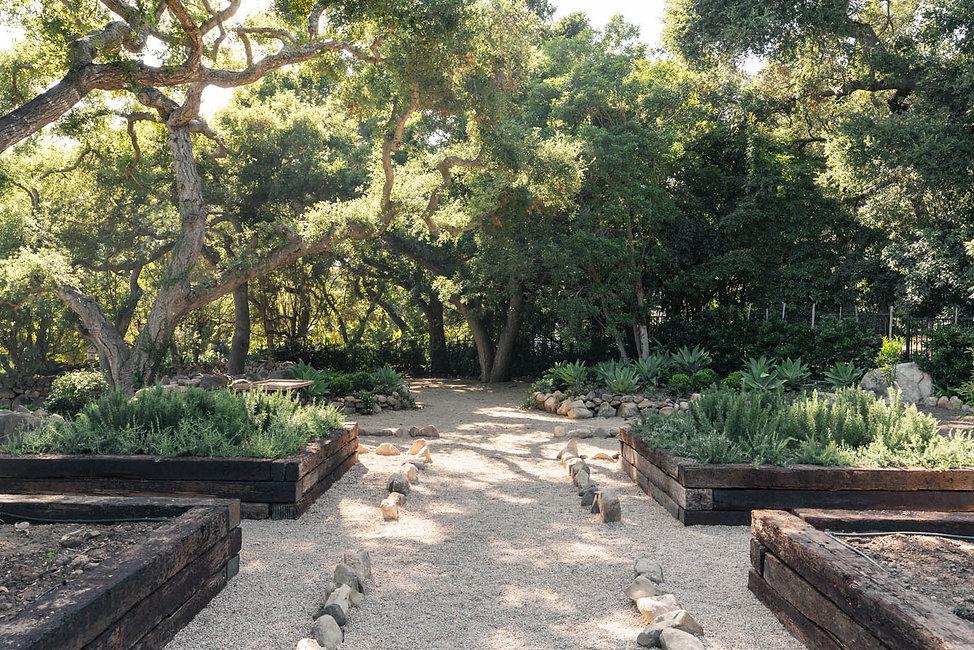 Garden beds.jpg