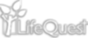 LifeQuest.png