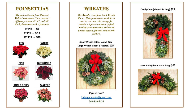 Pictures of Wreaths & Poinsettias 2.jpg